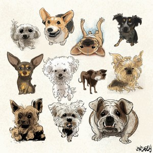 dogs-1420x1420